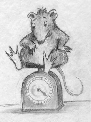 ratty-on-scale.jpg